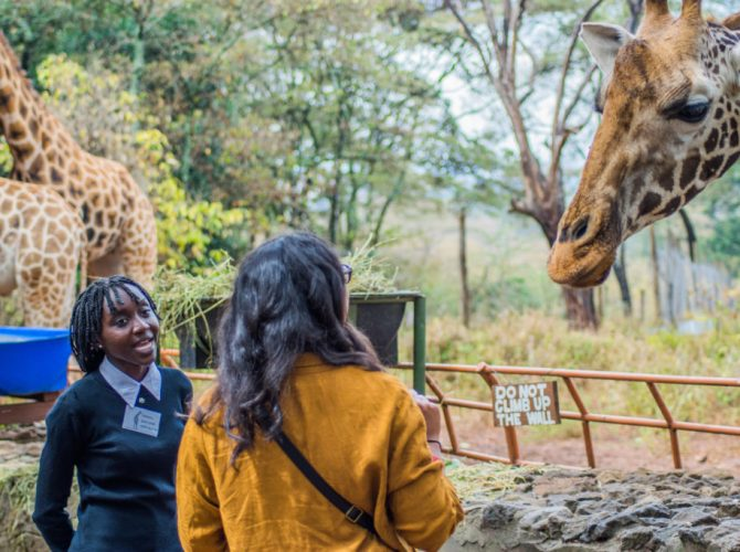 Local Guide – © Giraffe Centre